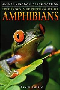 eBook Tree Frogs, Mud Puppies, and Other Amphibians (Animal Kingdom Classification) download