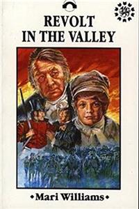eBook Revolt in the Valley download
