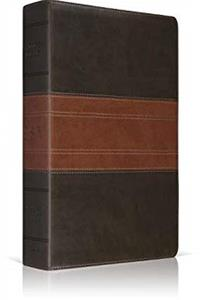 eBook ESV Classic Reference Bible (TruTone, Forest/Tan, Trail Design) download